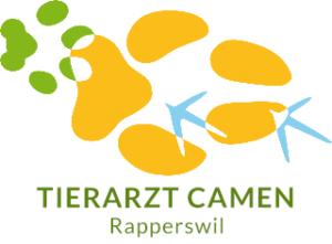 RomanCamenRapperswil-new