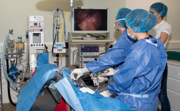 Laparoskopie-2-Cut